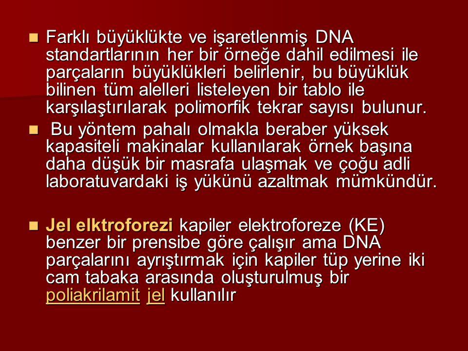 Farklı büyüklükte ve işaretlenmiş DNA standartlarının her bir örneğe dahil edilmesi ile parçaların büyüklükleri belirlenir, bu büyüklük bilinen tüm alelleri listeleyen bir tablo ile karşılaştırılarak polimorfik tekrar sayısı bulunur.