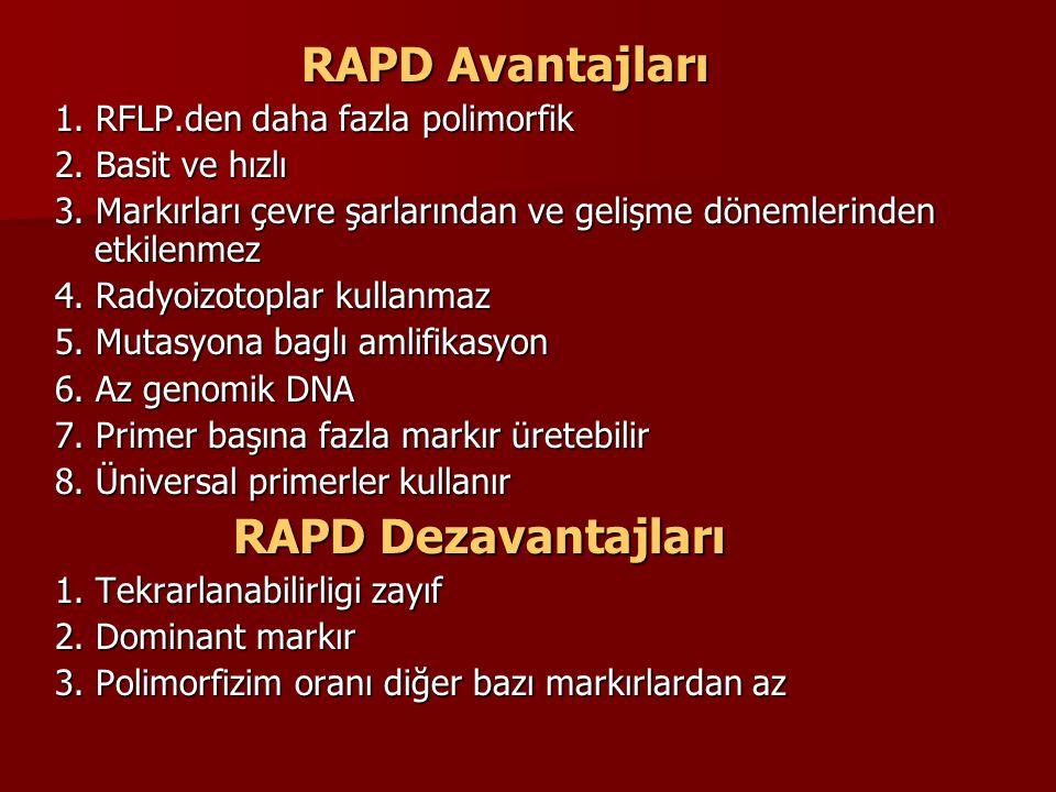 RAPD Dezavantajları RAPD Avantajları 1. RFLP.den daha fazla polimorfik