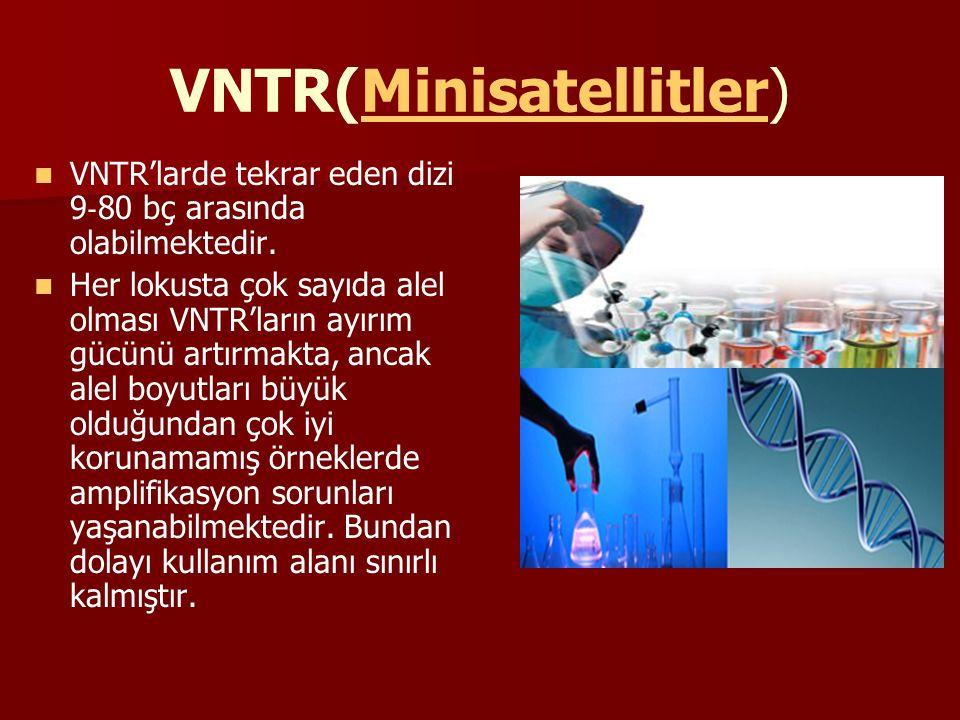 VNTR(Minisatellitler)