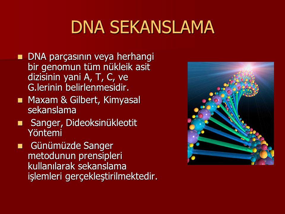 DNA SEKANSLAMA DNA parçasının veya herhangi bir genomun tüm nükleik asit dizisinin yani A, T, C, ve G.lerinin belirlenmesidir.
