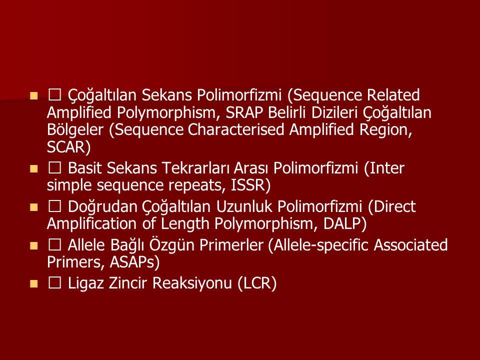  Çoğaltılan Sekans Polimorfizmi (Sequence Related Amplified Polymorphism, SRAP Belirli Dizileri Çoğaltılan Bölgeler (Sequence Characterised Amplified Region, SCAR)