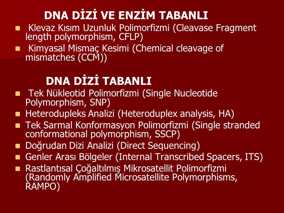 DNA DİZİ VE ENZİM TABANLI