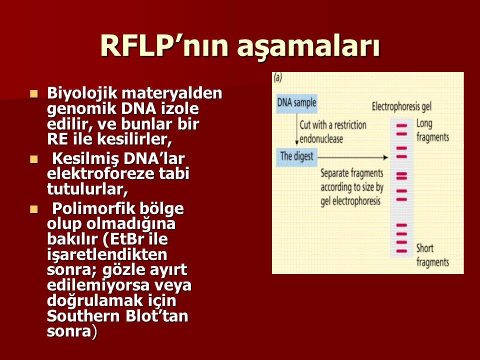 RFLP'nın aşamaları Biyolojik materyalden genomik DNA izole edilir, ve bunlar bir RE ile kesilirler,