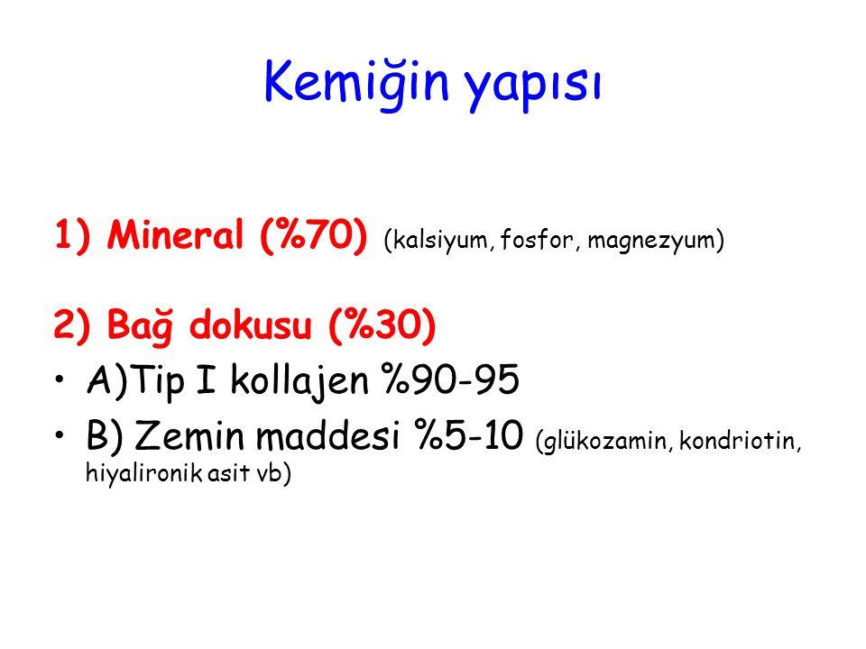 Kemiğin yapısı 1) Mineral (%70) (kalsiyum, fosfor, magnezyum)