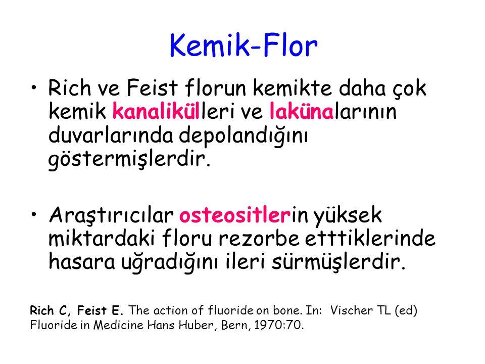 Kemik-Flor Rich ve Feist florun kemikte daha çok kemik kanalikülleri ve lakünalarının duvarlarında depolandığını göstermişlerdir.