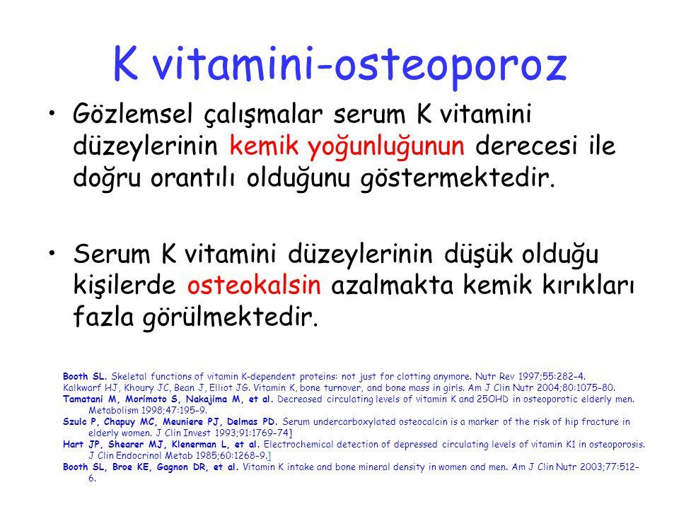 K vitamini-osteoporoz
