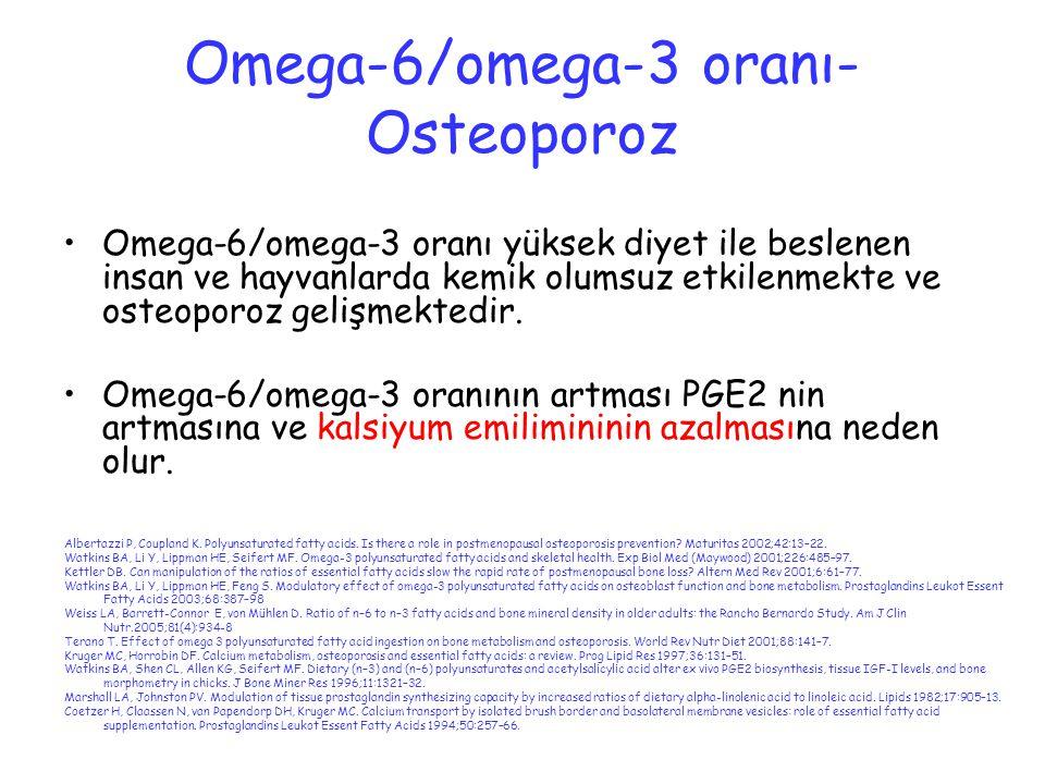 Omega-6/omega-3 oranı- Osteoporoz