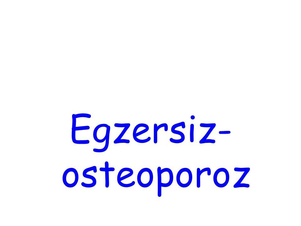 Egzersiz-osteoporoz