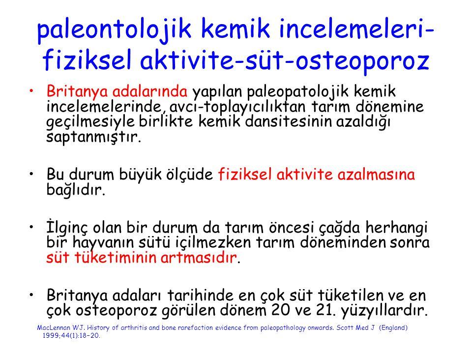 paleontolojik kemik incelemeleri-fiziksel aktivite-süt-osteoporoz