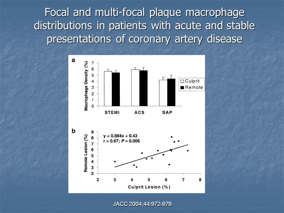 Focal and multi-focal plaque macrophage distributions in patients with acute and stable presentations of coronary artery disease
