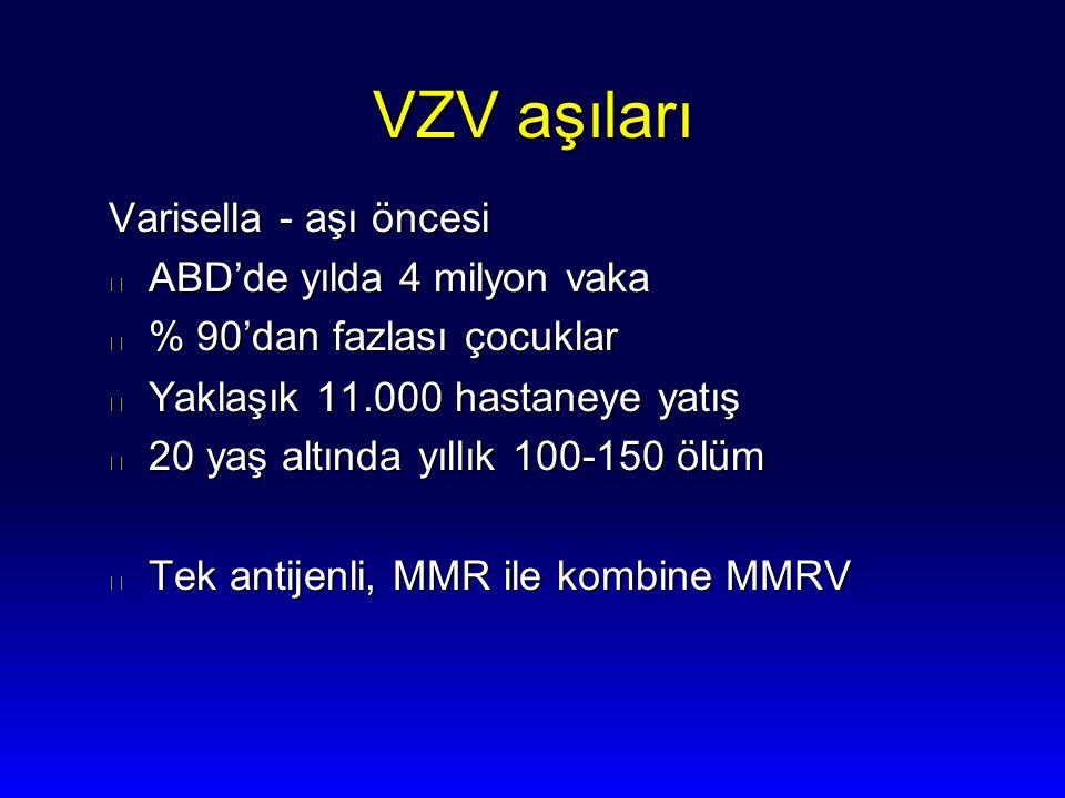 VZV aşıları Varisella - aşı öncesi ABD'de yılda 4 milyon vaka