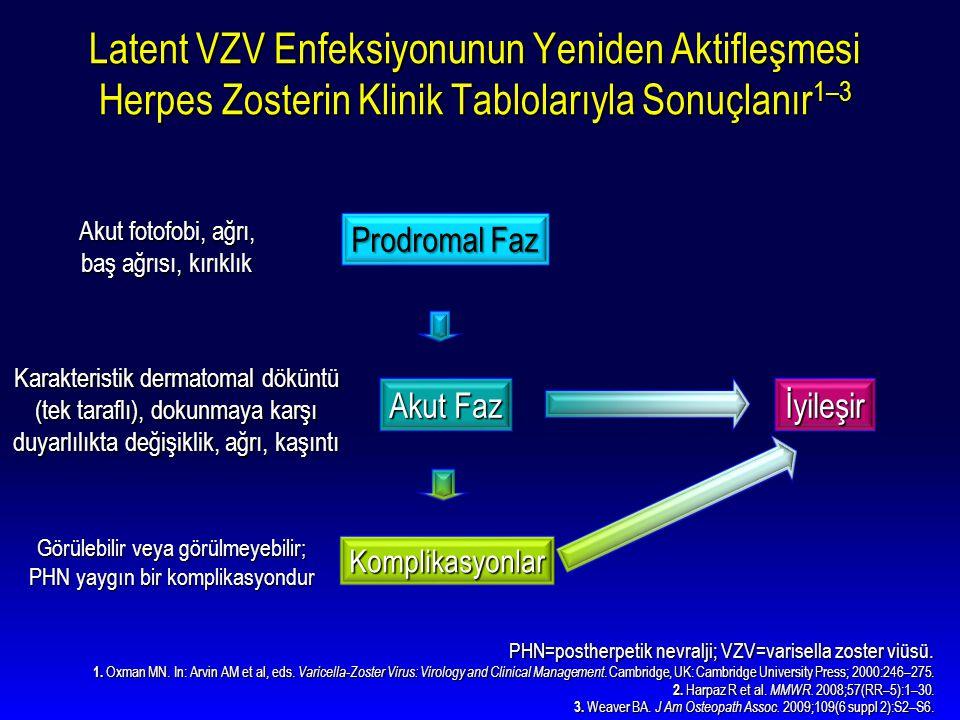 Latent VZV Enfeksiyonunun Yeniden Aktifleşmesi Herpes Zosterin Klinik Tablolarıyla Sonuçlanır1–3