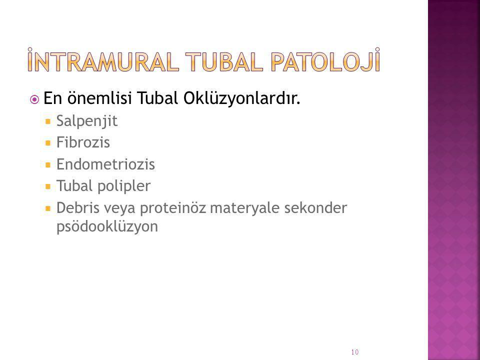 İntramural Tubal Patolojİ
