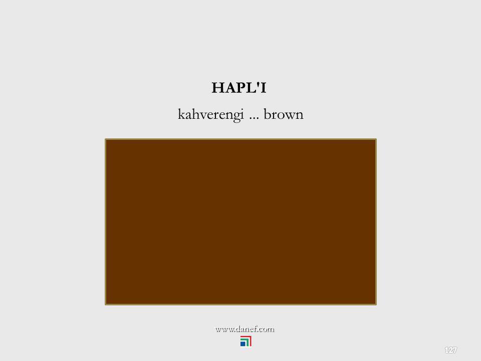 HAPL I kahverengi ... brown www.danef.com