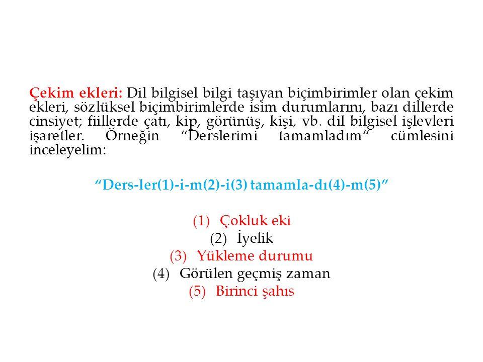 Ders-ler(1)-i-m(2)-i(3) tamamla-dı(4)-m(5)