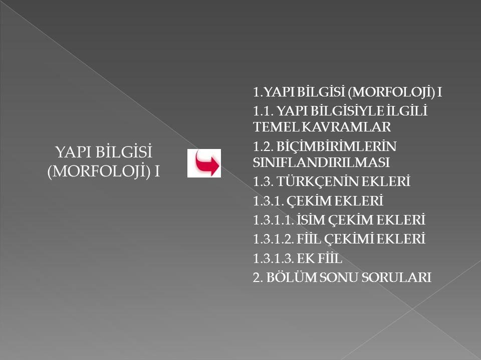 YAPI BİLGİSİ (MORFOLOJİ) I