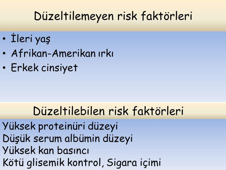 Düzeltilemeyen risk faktörleri
