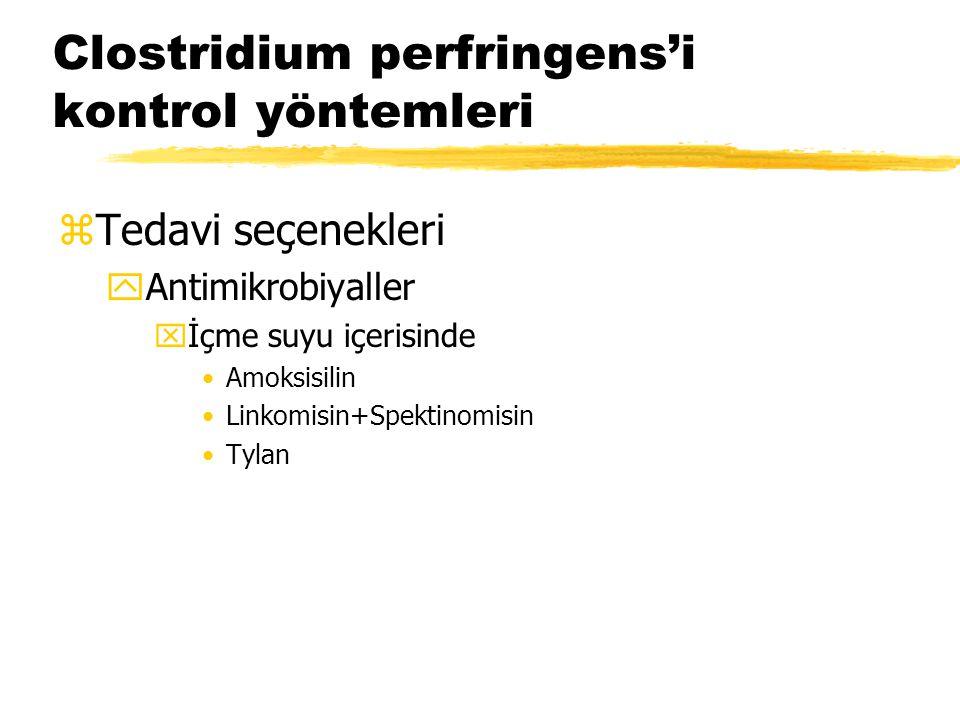 Clostridium perfringens'i kontrol yöntemleri