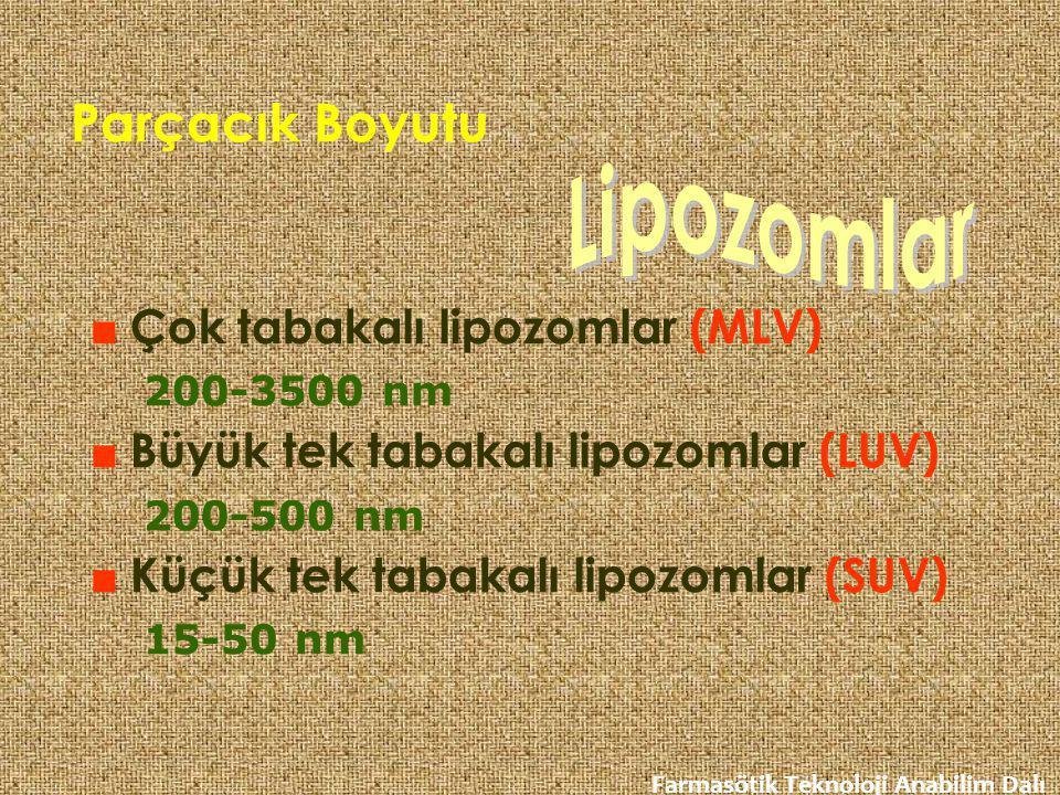 Parçacık Boyutu Lipozomlar