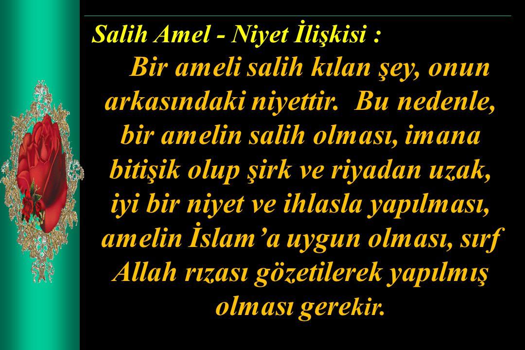 Salih Amel - Niyet İlişkisi :