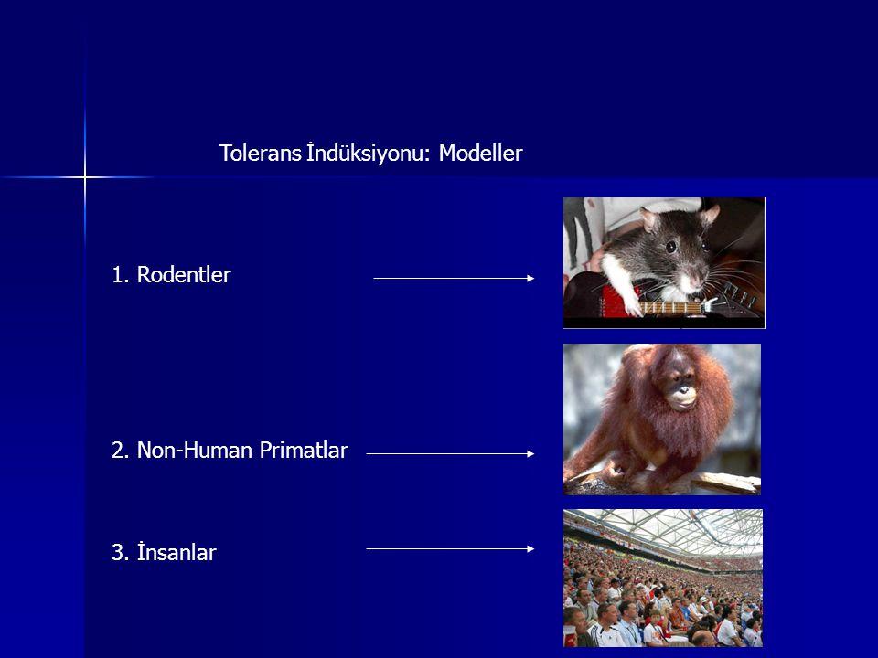 Tolerans İndüksiyonu: Modeller