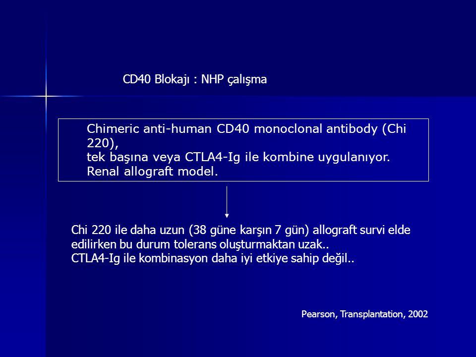 CD40 Blokajı : NHP çalışma