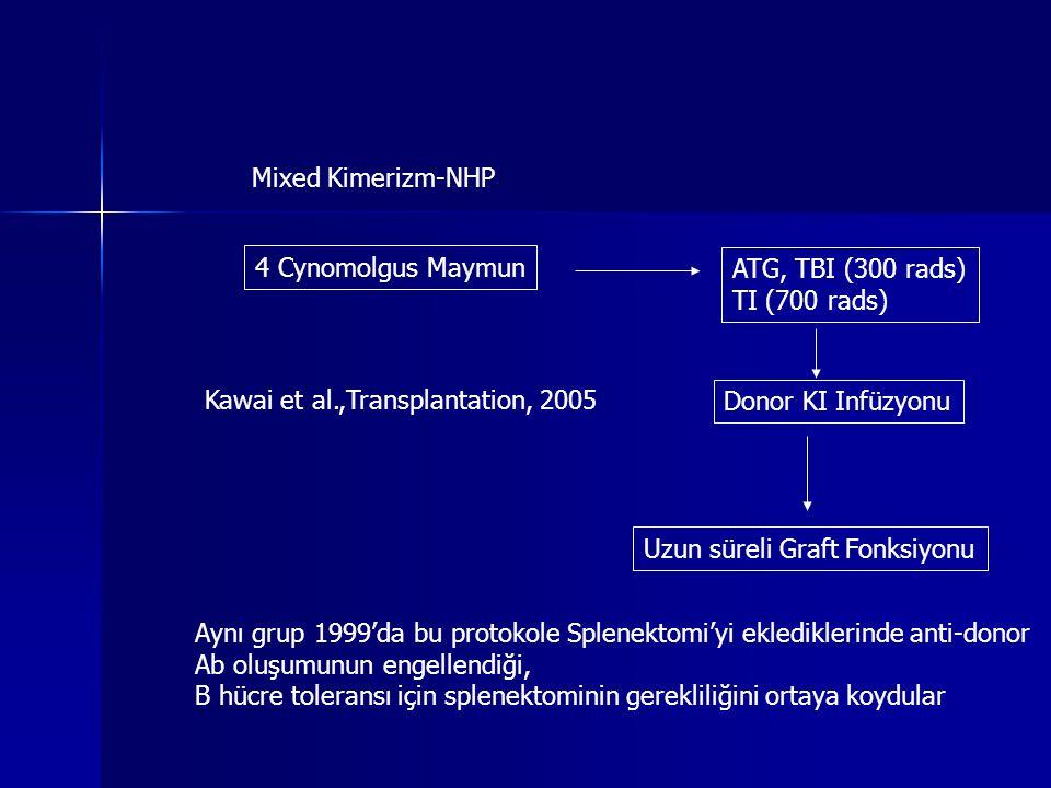 Mixed Kimerizm-NHP 4 Cynomolgus Maymun. ATG, TBI (300 rads) TI (700 rads) Kawai et al.,Transplantation, 2005.