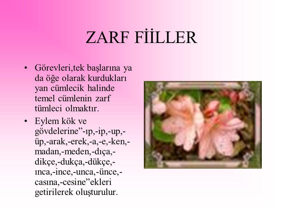 ZARF FİİLLER Görevleri,tek başlarına ya da öğe olarak kurdukları yan cümlecik halinde temel cümlenin zarf tümleci olmaktır.