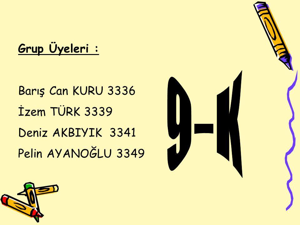 9-K Grup Üyeleri : Barış Can KURU 3336 İzem TÜRK 3339