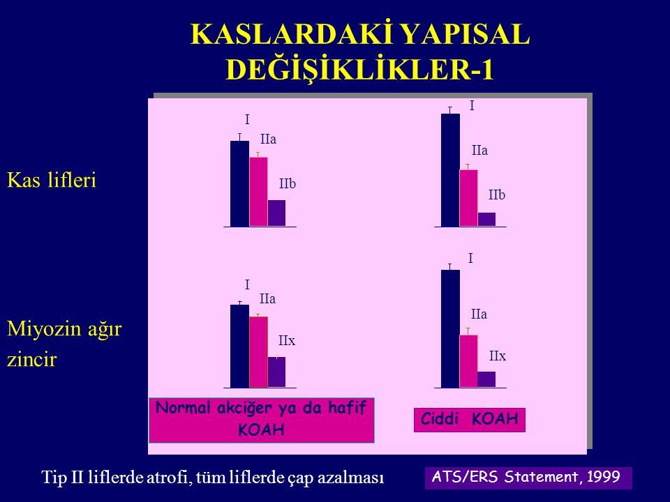 KASLARDAKİ YAPISAL DEĞİŞİKLİKLER-1
