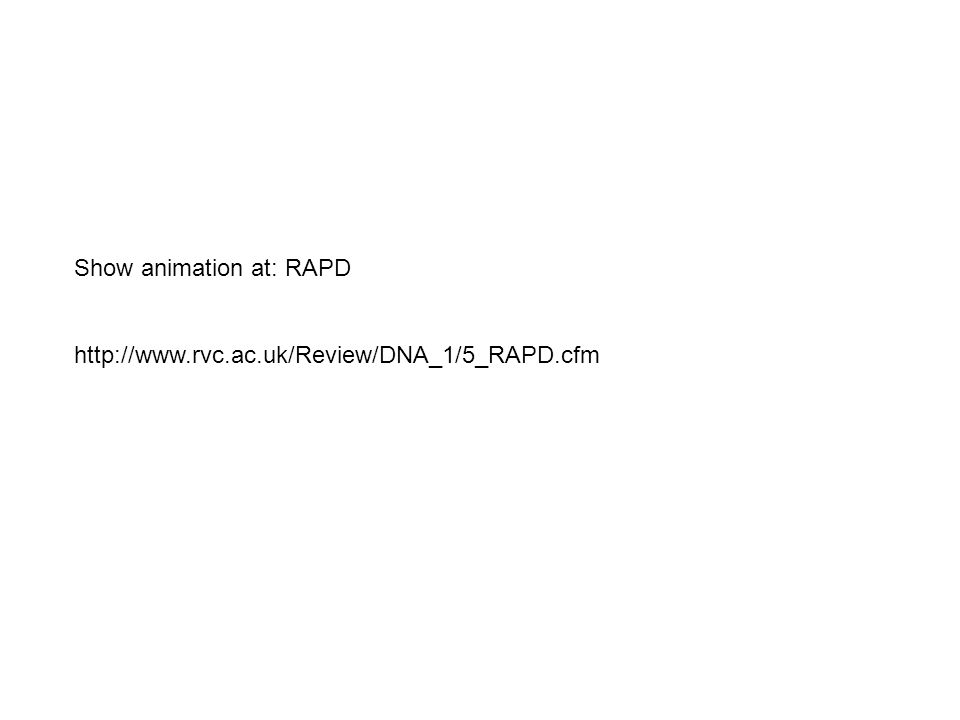 Show animation at: RAPD