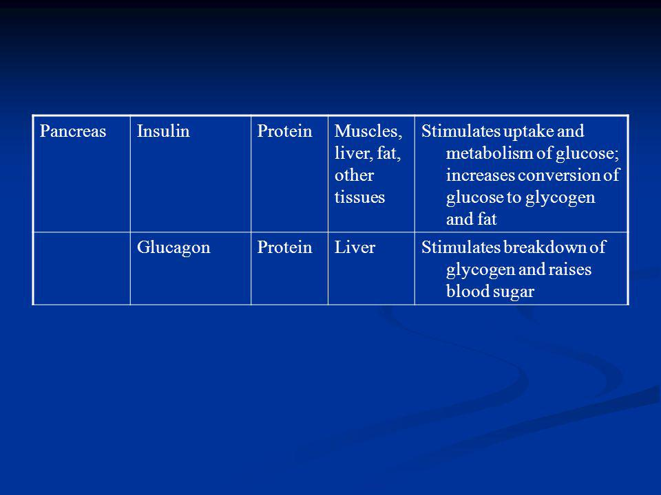 Pancreas Insulin. Protein. Muscles, liver, fat, other tissues.