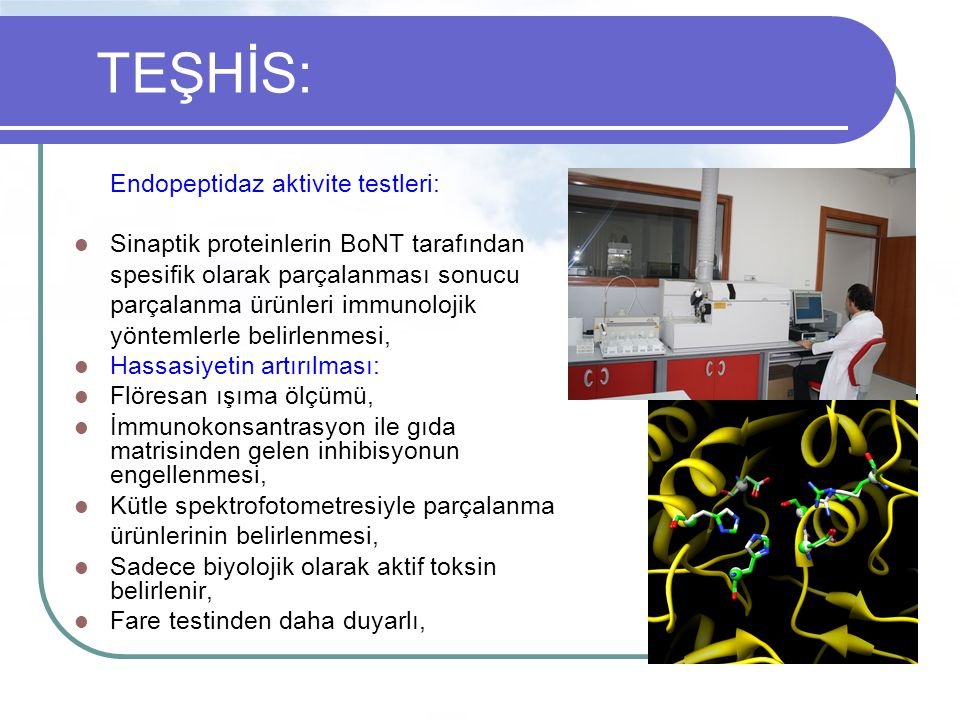 TEŞHİS: Endopeptidaz aktivite testleri: