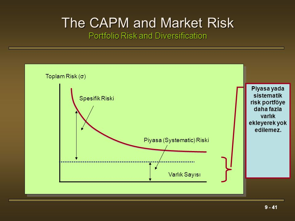 The CAPM and Market Risk Portfolio Risk and Diversification