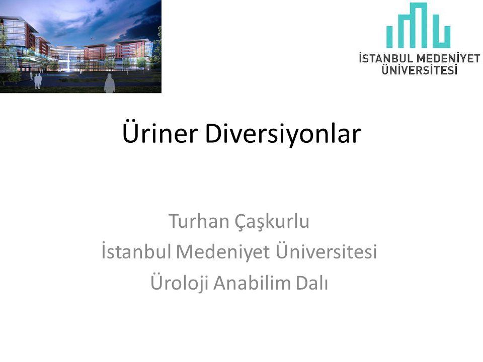 Turhan Çaşkurlu İstanbul Medeniyet Üniversitesi Üroloji Anabilim Dalı