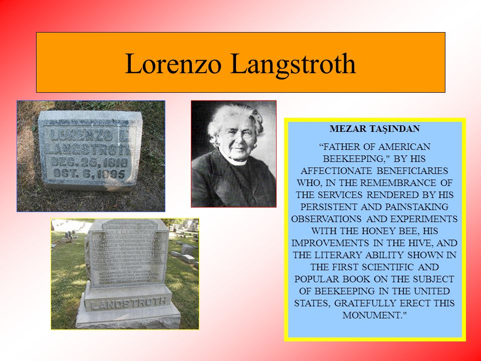 Lorenzo Langstroth MEZAR TAŞINDAN
