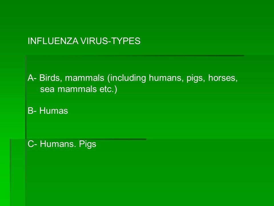 INFLUENZA VIRUS-TYPES