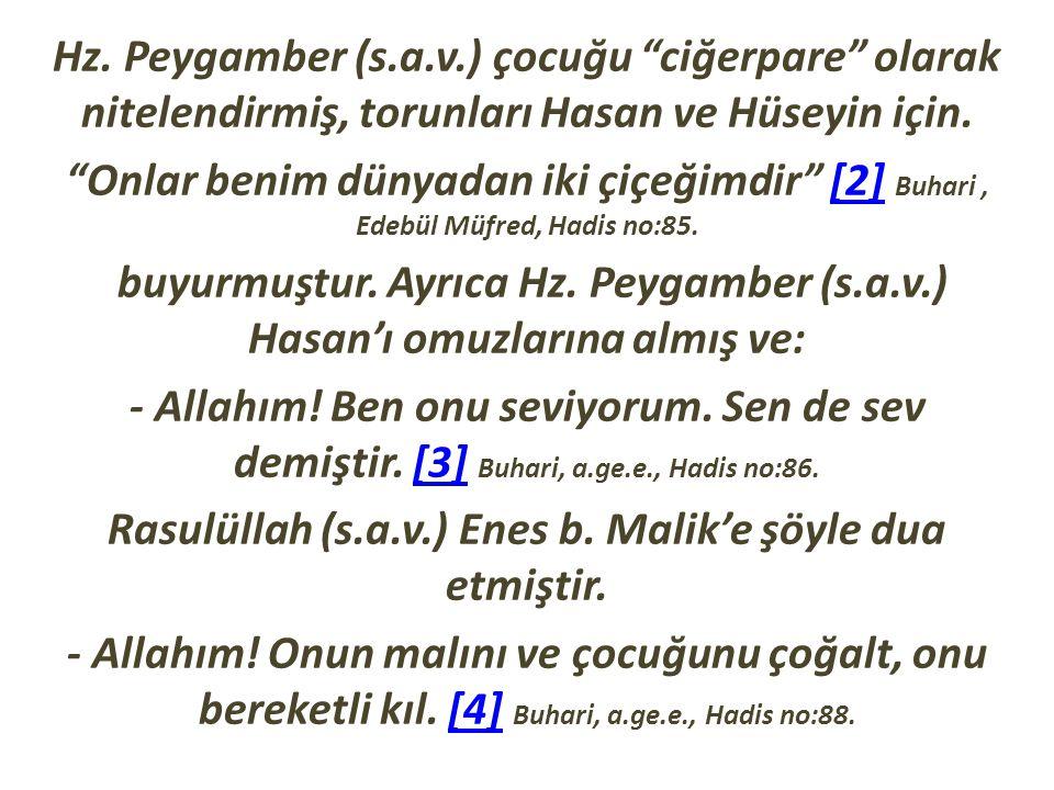 Rasulüllah (s.a.v.) Enes b. Malik'e şöyle dua etmiştir.