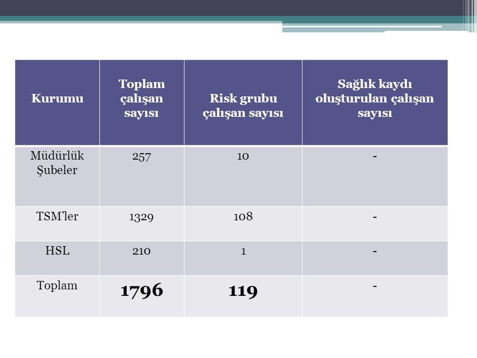 Risk grubu çalışan sayısı Sağlık kaydı oluşturulan çalışan sayısı