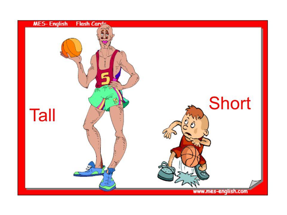 Short Tall