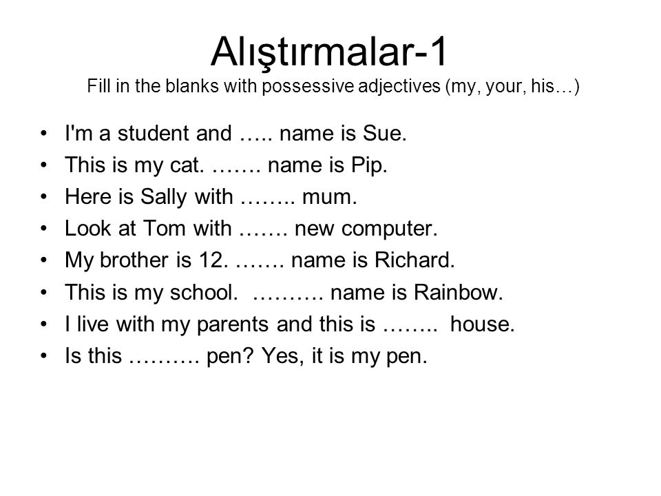 Alıştırmalar-1 Fill in the blanks with possessive adjectives (my, your, his…)
