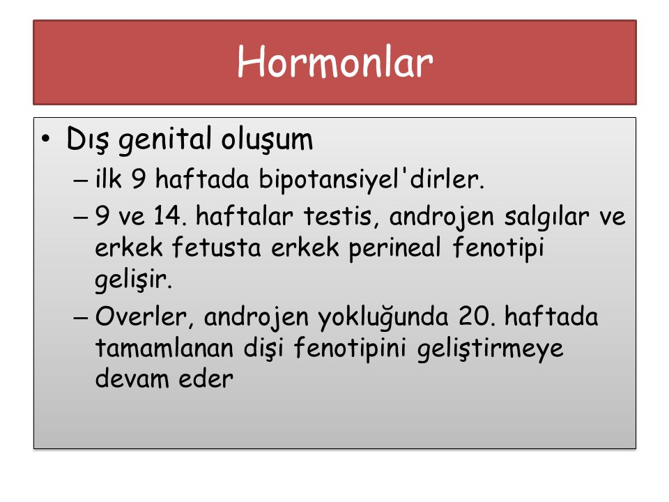 Hormonlar Dış genital oluşum ilk 9 haftada bipotansiyel dirler.