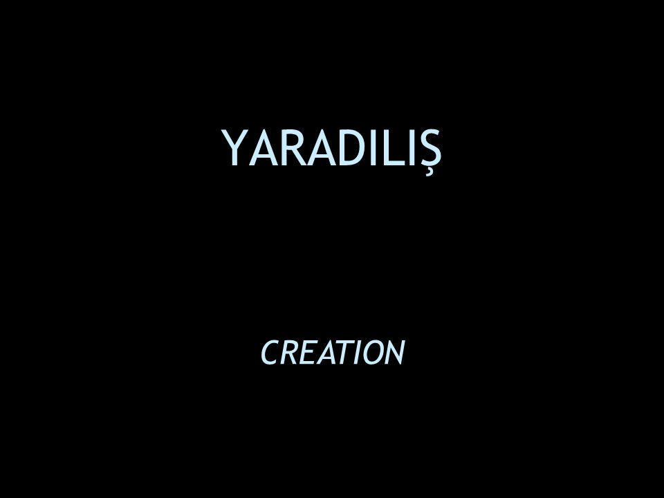 YARADILIŞ CREATION