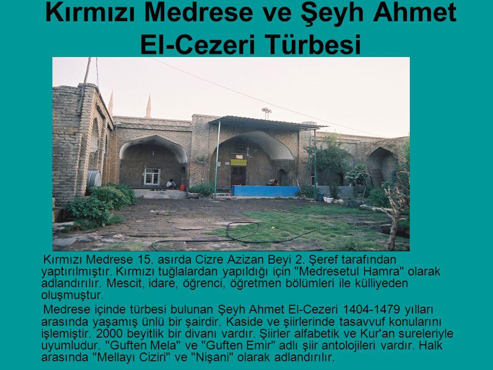 Kırmızı Medrese ve Şeyh Ahmet El-Cezeri Türbesi