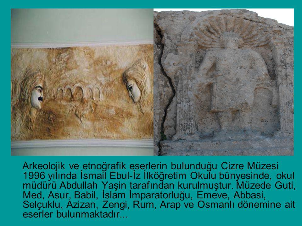 Arkeolojik ve etnoğrafik eserlerin bulunduğu Cizre Müzesi 1996 yılında İsmail Ebul-İz İlköğretim Okulu bünyesinde, okul müdürü Abdullah Yaşin tarafından kurulmuştur.