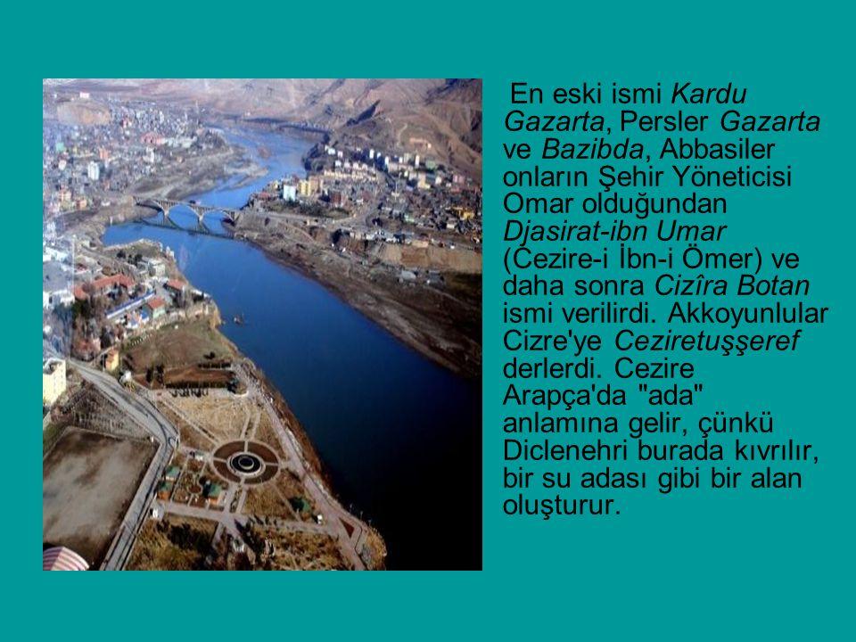 En eski ismi Kardu Gazarta, Persler Gazarta ve Bazibda, Abbasiler onların Şehir Yöneticisi Omar olduğundan Djasirat-ibn Umar (Cezire-i İbn-i Ömer) ve daha sonra Cizîra Botan ismi verilirdi.