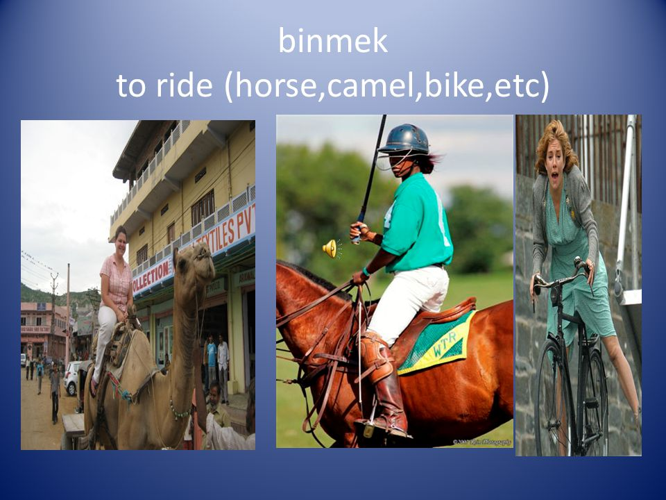 binmek to ride (horse,camel,bike,etc)