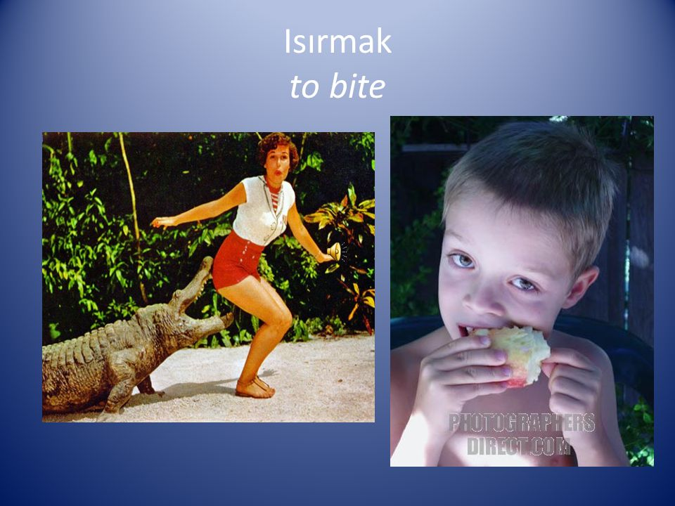 Isırmak to bite