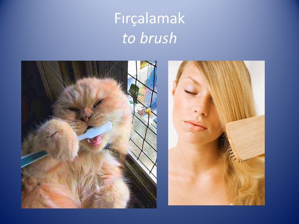 Fırçalamak to brush