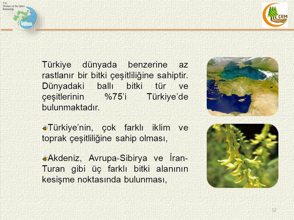 Türkiye dünyada benzerine az rastlanır bir bitki çeşitliliğine sahiptir. Dünyadaki ballı bitki tür ve çeşitlerinin %75'i Türkiye'de bulunmaktadır.